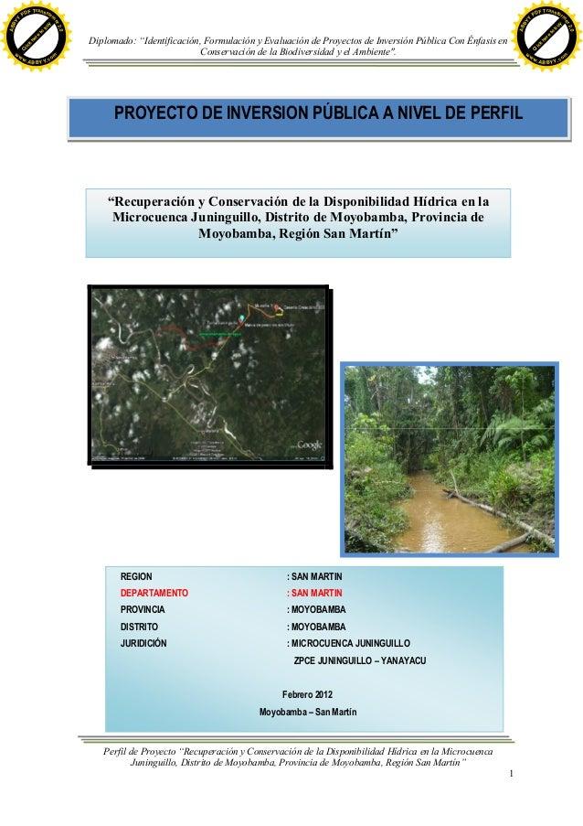 """Diplomado: """"Identificación, Formulación y Evaluación de Proyectos de Inversión Pública Con Énfasis en Conservación de la B..."""