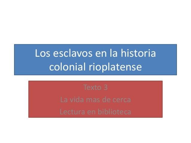 Los esclavos en la historia colonial rioplatense Texto 3 La vida mas de cerca Lectura en biblioteca