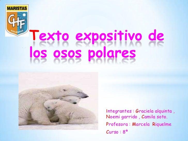 * Texto expositivo de los osos polares            Integrantes : Graciela alquinta ,            Noemi garrido , Camila soto...