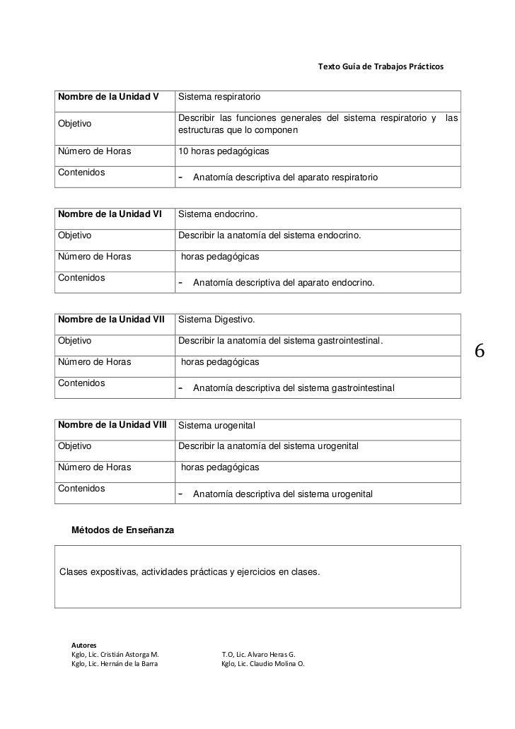 Moderno Prueba Práctica De Anatomía Bosquejo - Imágenes de Anatomía ...
