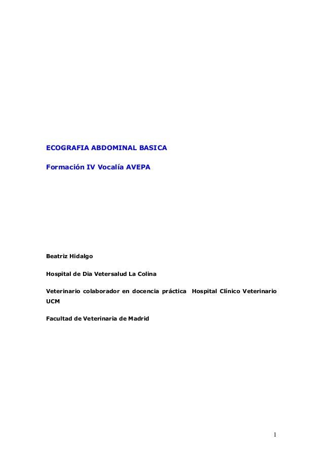 1 ECOGRAFIA ABDOMINAL BASICA Formación IV Vocalía AVEPA Beatriz Hidalgo Hospital de Dia Vetersalud La Colina Veterinario c...