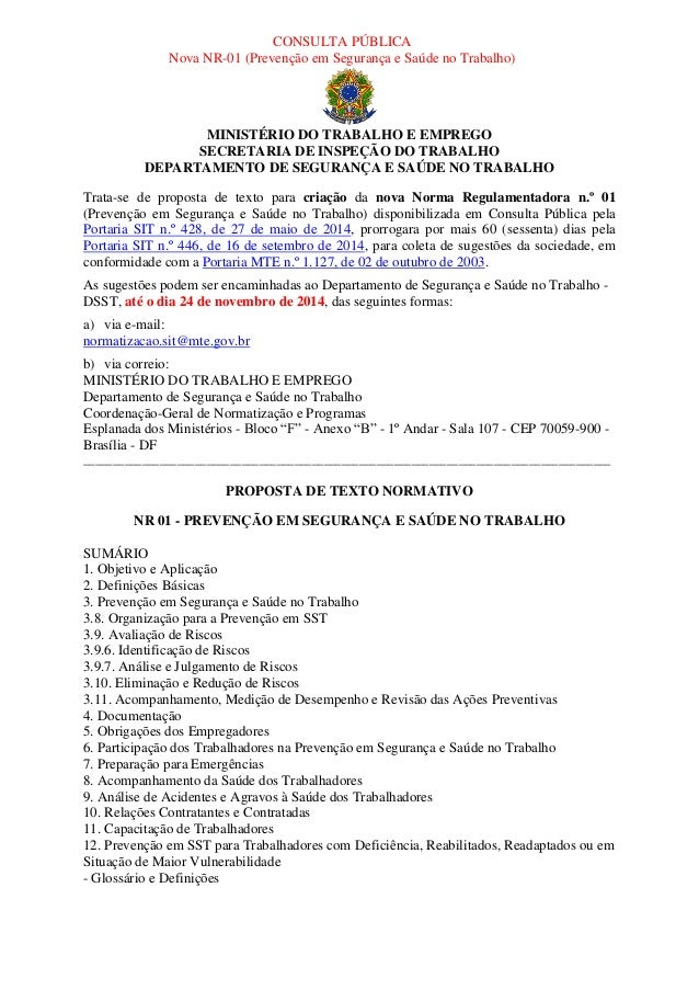 CONSULTA PÚBLICA  Nova NR-01 (Prevenção em Segurança e Saúde no Trabalho)  MINISTÉRIO DO TRABALHO E EMPREGO  SECRETARIA DE...