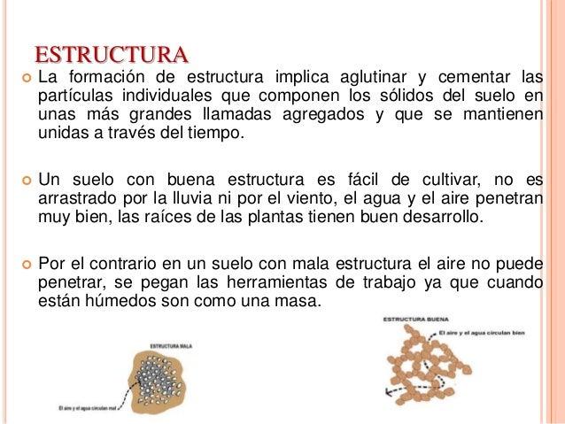 Textura y estructura del suelo for Cuales son las caracteristicas del suelo