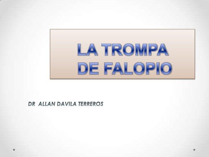 LA TROMPA DE FALOPIO<br />DR  ALLAN DAVILA TERREROS<br />