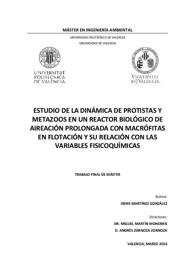MÁSTER EN INGENIERÍA AMBIENTAL UNIVERSIDAD POLITÉCNICA DE VALENCIA ESTUDIO DE LA DINÁMICA DE PROTISTAS Y METAZOOS EN UN RE...