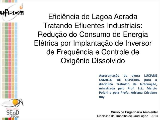 Curso de Engenharia Ambiental Disciplina de Trabalho de Graduação - 2013 Apresentação da aluna LUCIANE CAMILLO DE OLIVEIRA...