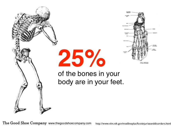 25%                             of the bones in your                             body are in your feet.The Good Shoe Compa...
