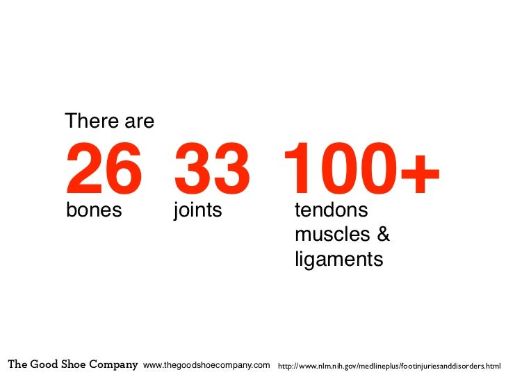 There are         26 33 100+         bones                 joints                         tendons                         ...