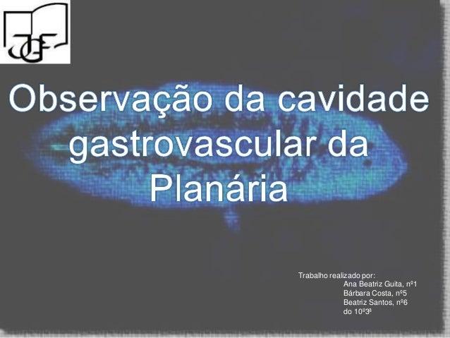 Trabalho realizado por:Ana Beatriz Guita, nº1Bárbara Costa, nº5Beatriz Santos, nº6do 10º3ª