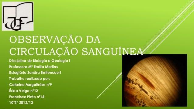 Disciplina de Biologia e Geologia IProfessora Mª Emília MartinsEstagiária Sandra BettencourtTrabalho realizado por:Catarin...