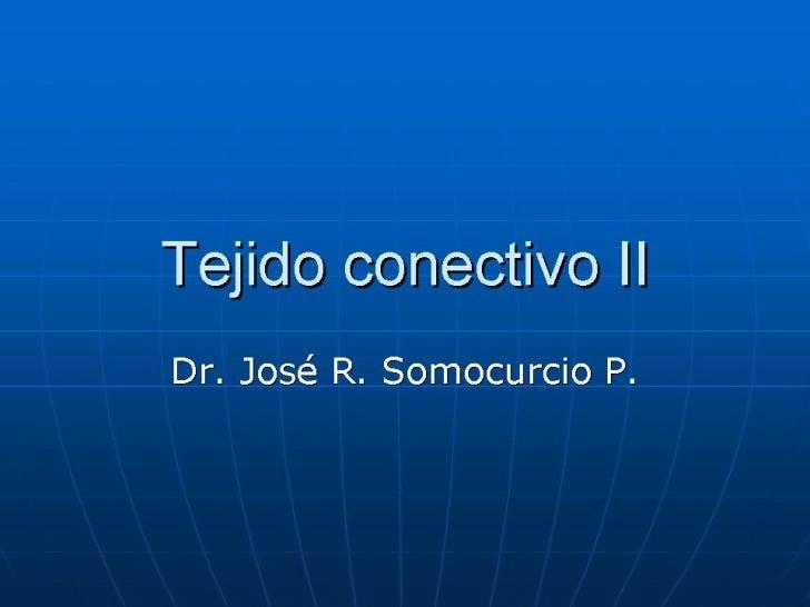 Th05   tejido conectivo ii