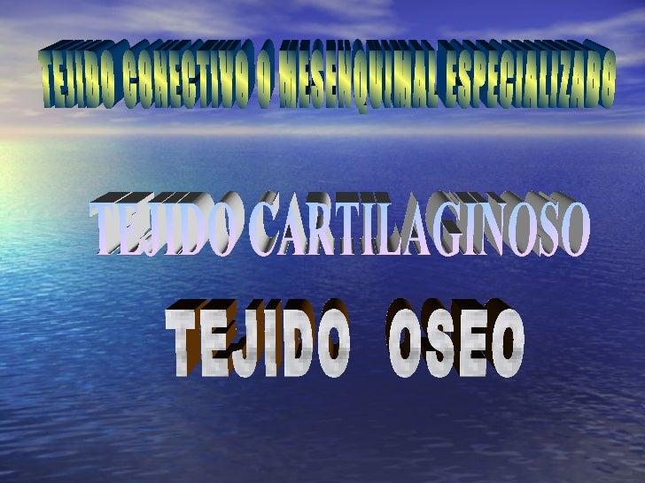 MEDICINA – U.S.M.P               HISTOLOGIA                 Dr. J. ROSALES MONT                     TEJIDO CARTILAGINOSO ...