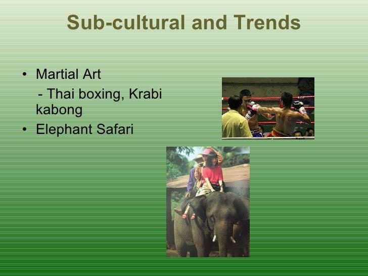 Sub-cultural and Trends <ul><li>Martial Art </li></ul><ul><li>- Thai boxing, Krabi kabong </li></ul><ul><li>Elephant Safar...