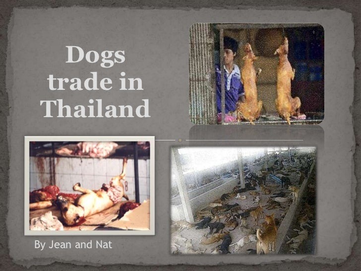 Dogs trade in ThailandBy Jean and Nat