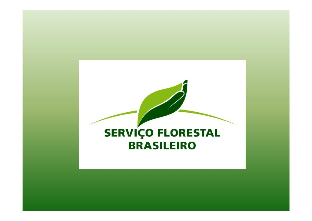 Brazilian Forest Service • Created in 2006 by the Public Forests Law (Lei   11.284 de 2006). • The Brazilian Forest Servic...