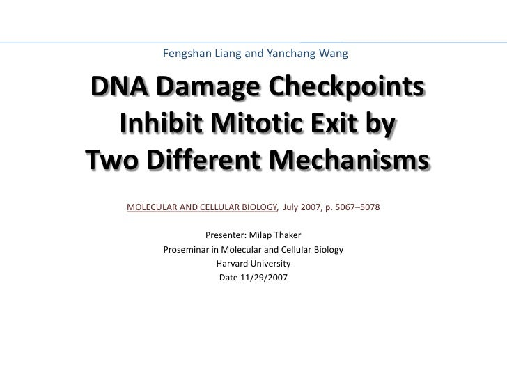 MOLECULAR AND CELLULAR BIOLOGY ,  July 2007, p. 5067–5078 Presenter: Milap Thaker Proseminar in Molecular and Cellular Bio...