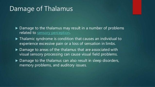 Thalamus ppt