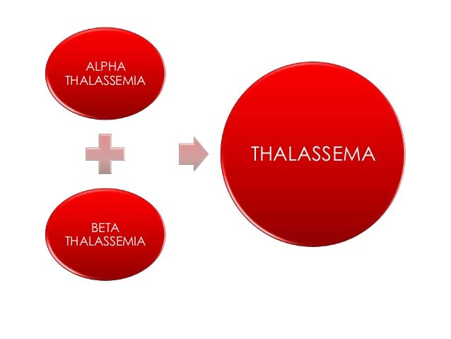 Image result for Thalassemia