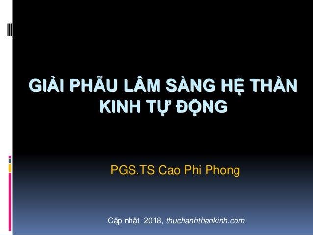 GIẢI PHẪU LÂM SÀNG HỆ THẦN KINH TỰ ĐỘNG PGS.TS Cao Phi Phong Cập nhật 2018, thuchanhthankinh.com