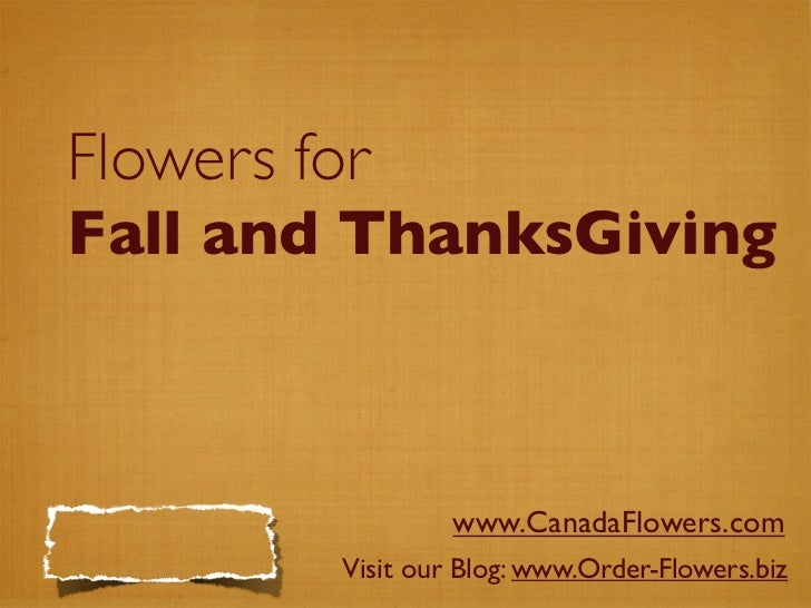 Flowers for Fall and ThanksGiving                       www.CanadaFlowers.com           Visit our Blog: www.Order-Flowers....