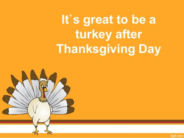 It`s great to be a  turkey after  Thanksgiving Day