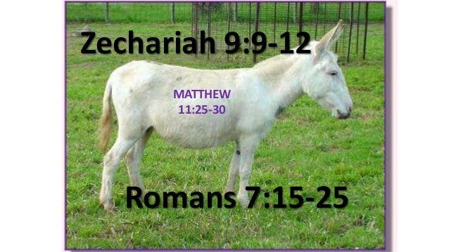 Zechariah 9:9-12 Romans 7:15-25 MATTHEW 11:25-30