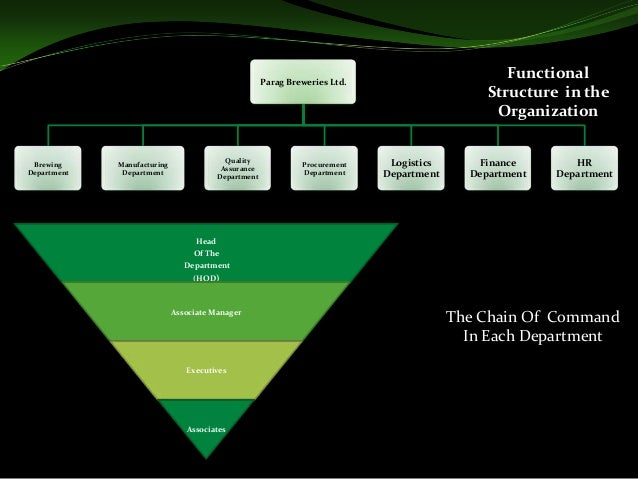 the basic organization structure of carlsberg brewery Function, as a sub-system of an organization's operation  which divides in three  basic phases: getting malt, getting a brewing malt and  carlsberg serbia   form, ie a level of structure: structural, semi-structural and non-structural.