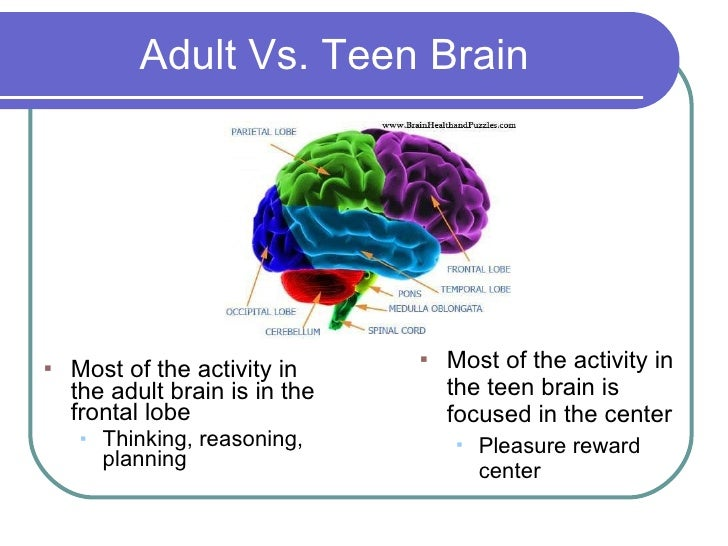 teen vs adult By the time teen years were reached the brain was  s sort of unfair to expect teens to have adult levels of organizational skills or decision-making.