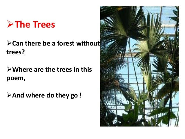 The Trees Can there be a forest without trees? Where are the trees in this poem, And where do they go !