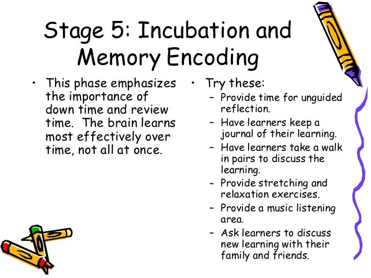 The 7 Stage Brain Based Learning Lesson Planning