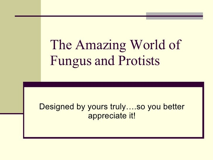 The Amazing World of Fungus and Protists Designed by yours truly….so you better appreciate it!