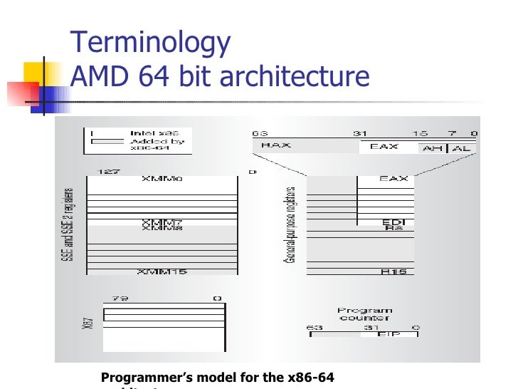 The Amd Opteron Processor