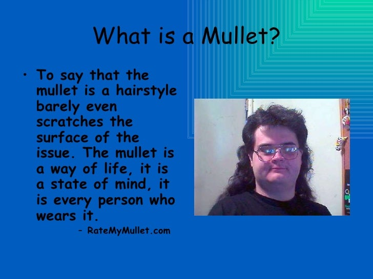 The art of the mullet what is a mullet urmus Choice Image