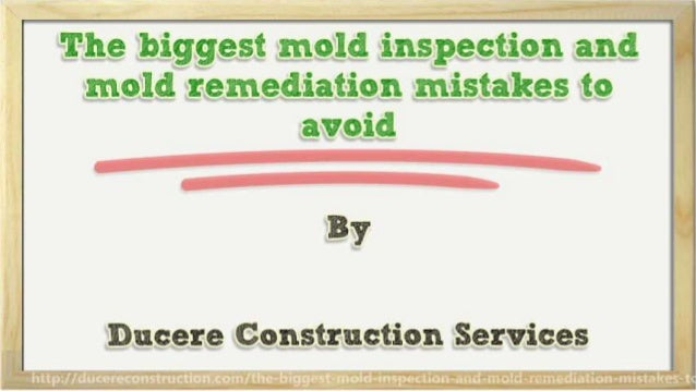 The biggest mold inspection and mold remediation mistakes to avoid