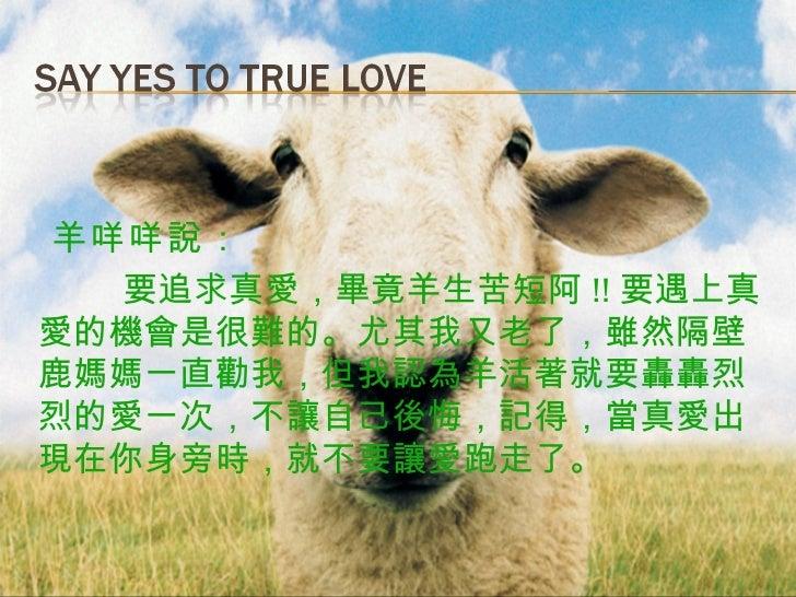 <ul><li>羊咩咩說:   </li></ul><ul><li>要追求真愛,畢竟羊生苦短阿 !! 要遇上真愛的機會是很難的。尤其我又老了,雖然隔壁鹿媽媽一直勸我,但我認為羊活著就要轟轟烈烈的愛一次,不讓自己後悔,記得,當真愛出現在你身旁時,...