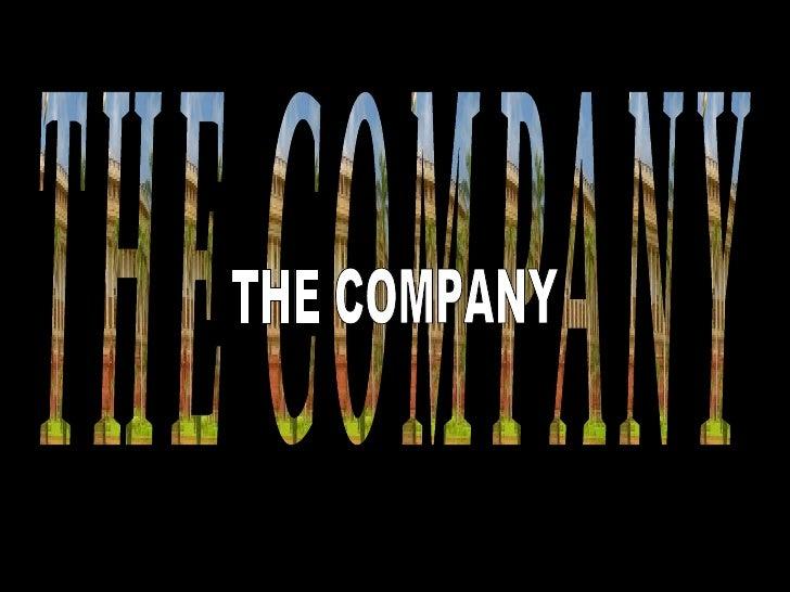 THE COMPANY THE COMPANY
