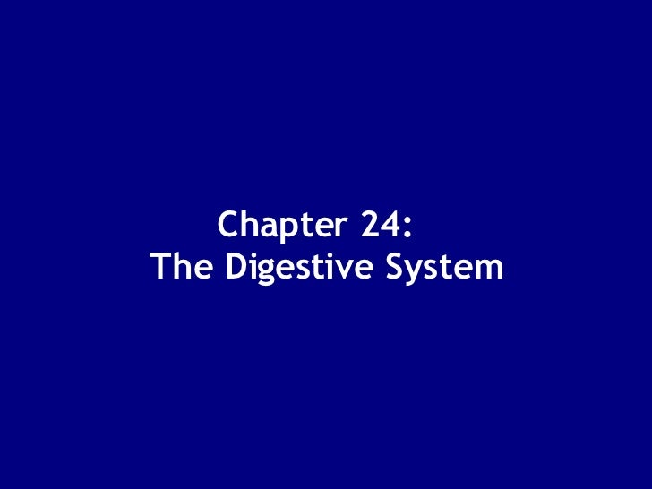 Chapter 24:  The Digestive System