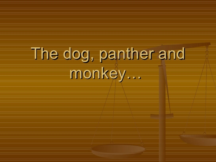 The dog, panther and monkey…
