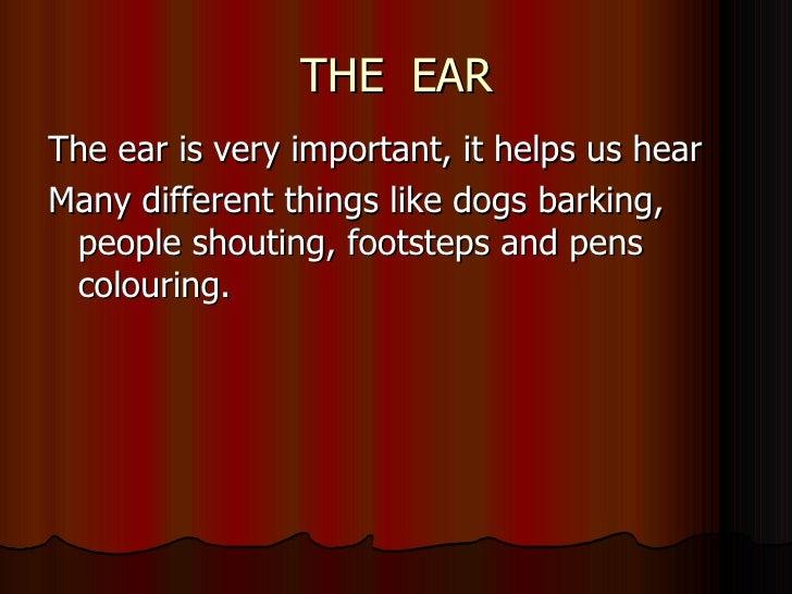 THE  EAR <ul><li>The ear is very important, it helps us hear  </li></ul><ul><li>Many different things like dogs barking, p...