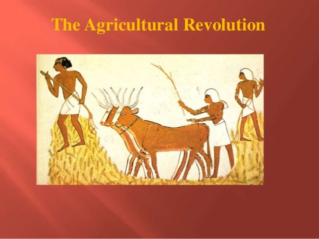 The first migration and agricultural revolution