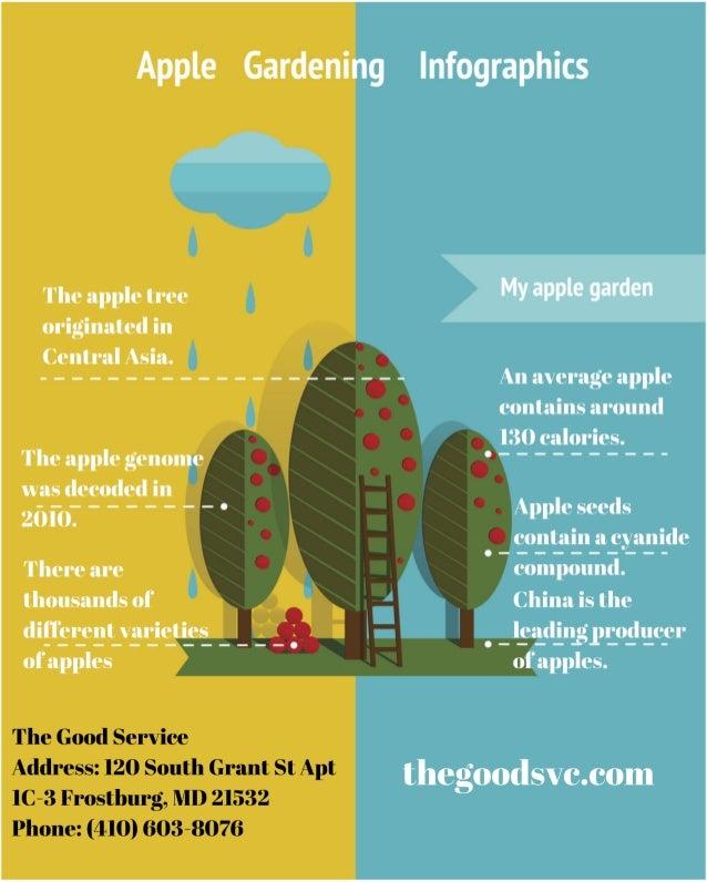 Apple Gardening Infographic