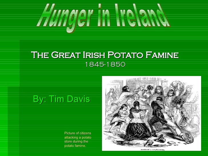 The Great Irish Potato Famine 1845-1850 By: Tim Davis Hunger in Ireland Picture of citizens attacking a potato store durin...