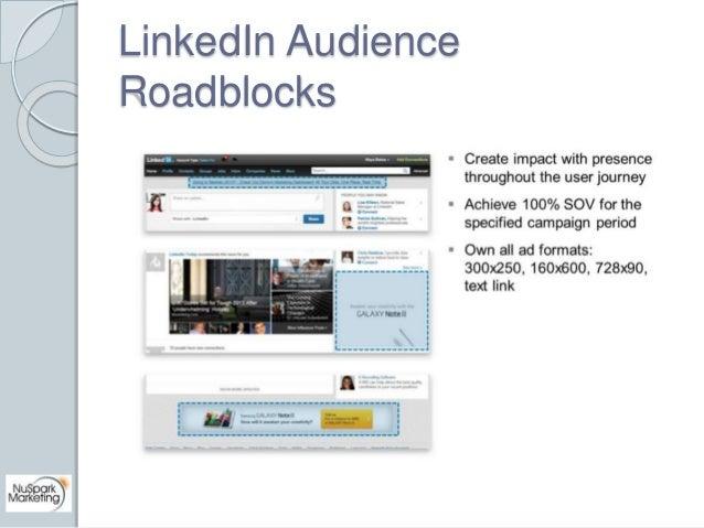LinkedIn Audience  Roadblocks