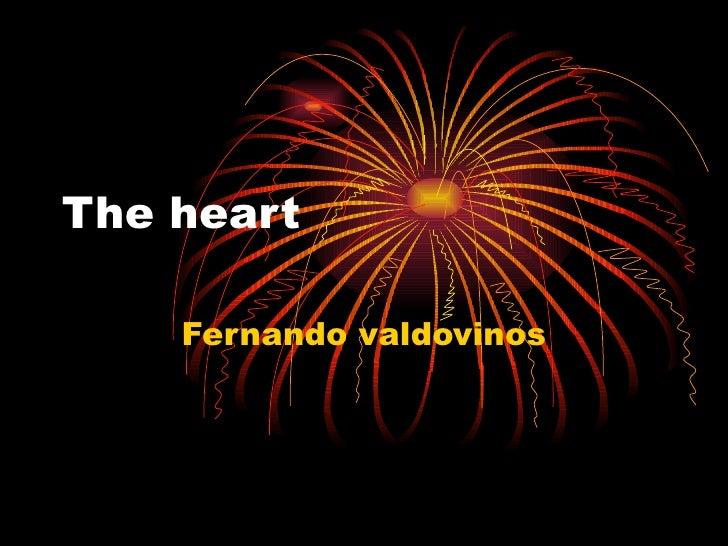 The heart  Fernando valdovinos