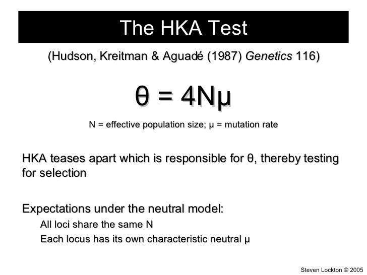The HKA Test <ul><li>(Hudson, Kreitman & Aguad é (1987)  Genetics  116) </li></ul><ul><li>θ  = 4N μ </li></ul><ul><li>N = ...