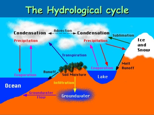 The hydrological-cycle