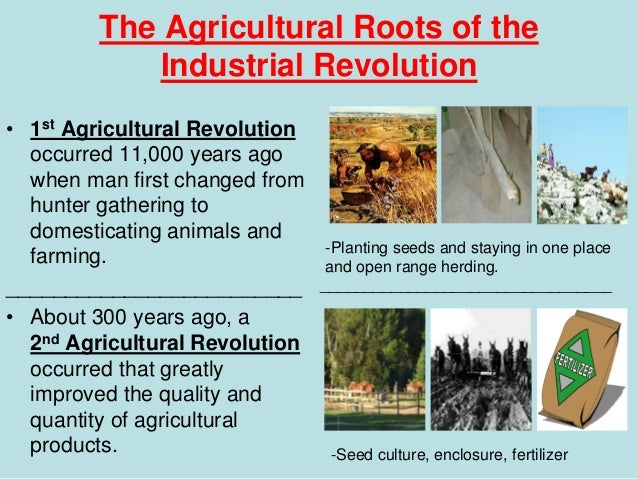 agricultural revolution britain Indeed the agricultural revolution had begun long before the eighteenth century one important aspect was the acceptance of the britain was highly commercial.