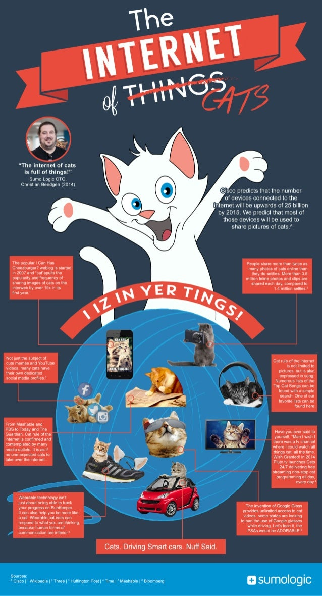 """""""The internet of cats  is full of things! """"  Sumo Logic CTO,   Christian Beedgen (2014)  The popular I Can Has Cheezburger..."""