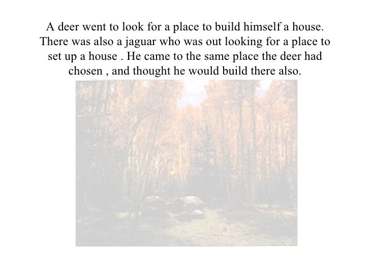 A deer went to look for a place to build himself a house. There was also a jaguar who was out looking for a place to set u...