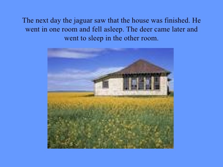 The next day the jaguar saw that the house was finished. He went in one room and fell asleep. The deer came later and went...